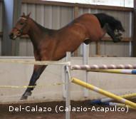 Del-Calazo